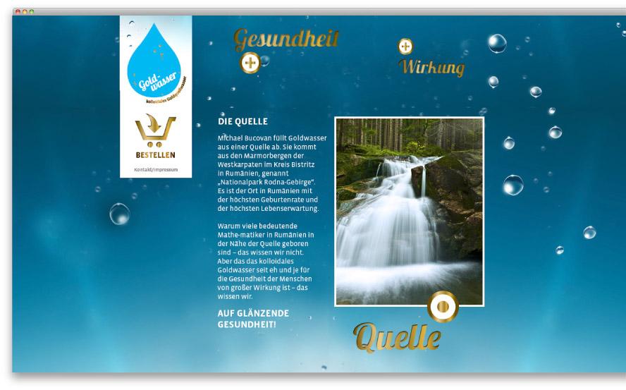 goldwasser_screen2